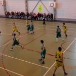 basket 011
